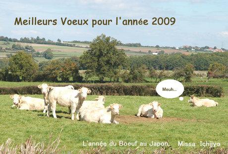 Annee2009