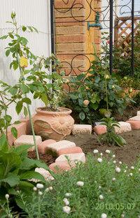Garden0507a